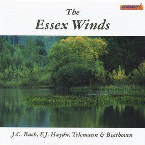 Essex Winds