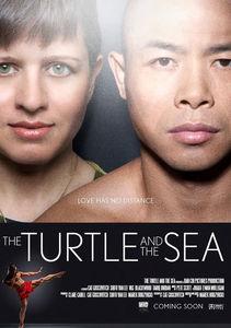 Turtle & the Sea