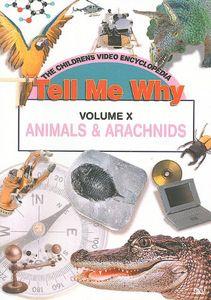 Animals and Arachnids