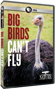 Nature: Big Birds Can't Fly