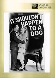 It Shouldn't Happen to a Dog