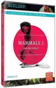 Biology Classification: Mammals 2