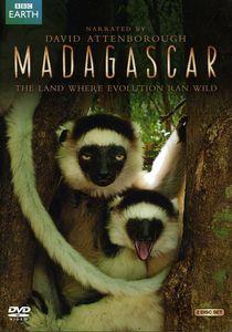 Madagascar (2011)