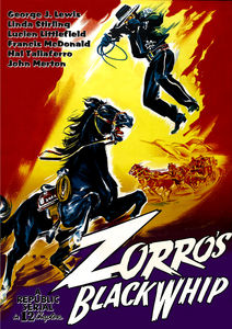 Zorro's Black Whip