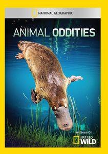 Animal Oddities