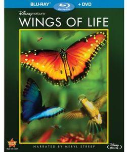 Disneynature: Wings of Life