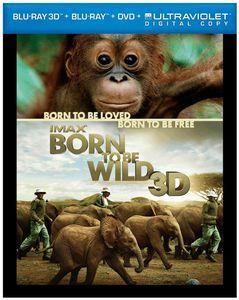 Born to Be Wild 3D