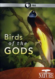 Nature: Birds of the Gods