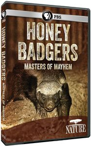 Nature: Honey Badgers: Masters of Mayhem