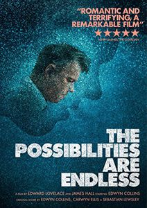 Possibilities Are Endless [Import]