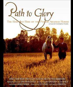 Path to Glory: The Rise & Rise of the Polish Arabi