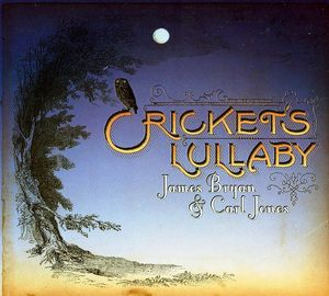 Cricket's Lullaby