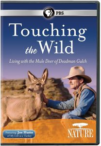 Nature: Touching the Wild - Living With the Mule Deer of Deadman Gulch
