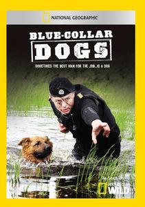 Blue Collar Dogs