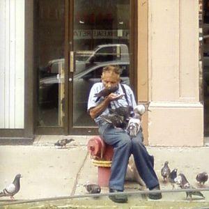 I Will Raise a Bird Army