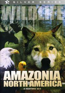 Wildlife: Amazonia North America /  North America
