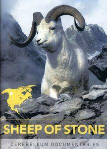 Sheep of Stone