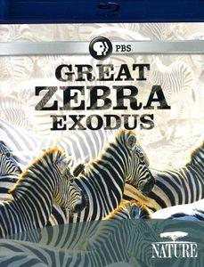 Nature: Great Zebra Exodus