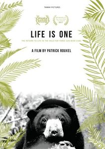 Life Is One: The Return To Life In The Wild For 3 Sun Bear Cubs