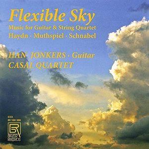 Flexible Sky - Music for Guitar & String Quartet