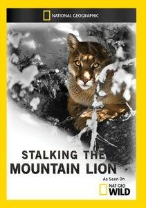 Stalking the Mountain Lion