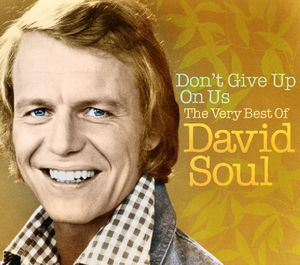 Dont Give Up on Us: Very Best of [Import]