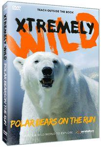 Polar Bears on the Run