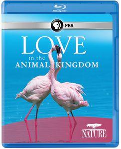 Nature: Love in the Animal Kingdom
