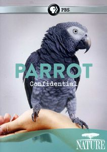 Nature: Parrot Confidential
