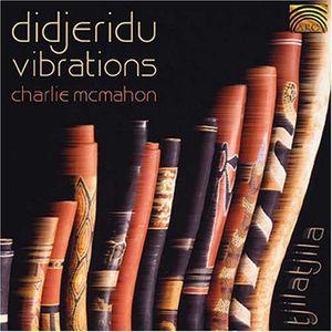 Didjeridu Vibrations