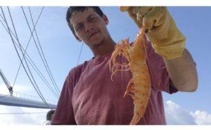 Big Shrimpin: No Rest Tex