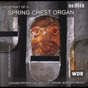 Portrait of a Spring Chest Organ