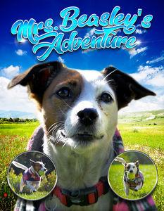 Mrs. Beasley's Adventure: A Jack Russell Terrier Tale!