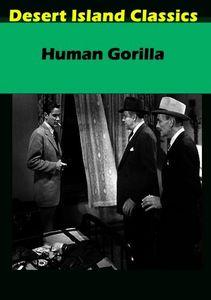 Human Gorilla