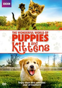Wonderful World Of Puppies And Kittens