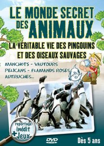 La Vie Des Pingouins Et Oiseaux Sau [Import]