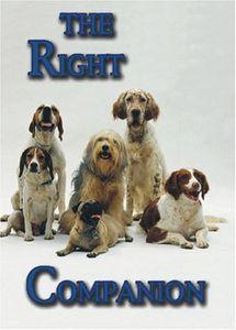 The Right Companion