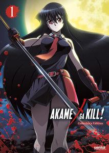 Akame Ga Kill 1