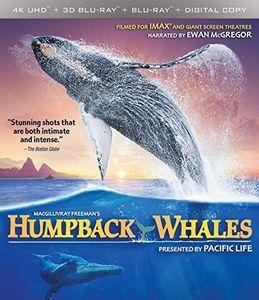 Imax: Humpback Whales
