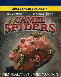 Camel Spiders