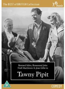 Tawny Pipit [Import]