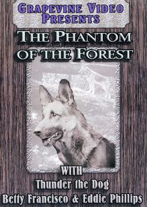 The Phantom of the Forest