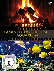 Fireplace/ Aquarium
