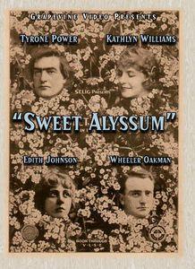 Sweet Alyssum (1915)