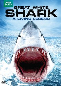 Great White Shark - A Living Legend