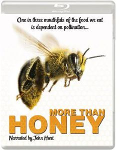 More Than Honey [Import]