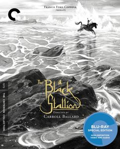 The Black Stallion (Criterion Collection)
