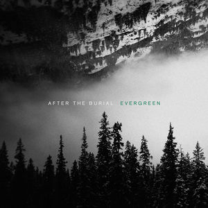 Evergreen , After the Burial
