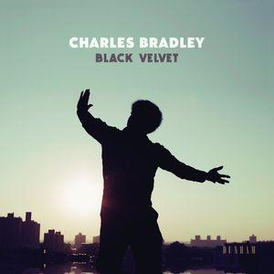 Black Velvet , Charles Bradley
