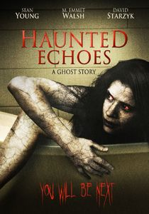 Haunted Echoes: A Ghost Story